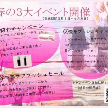 春の3大キャンペーン(小)