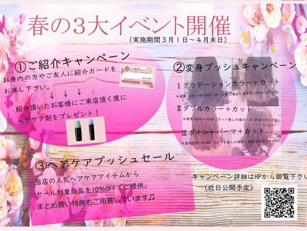 春の3大キャンペーン (1)